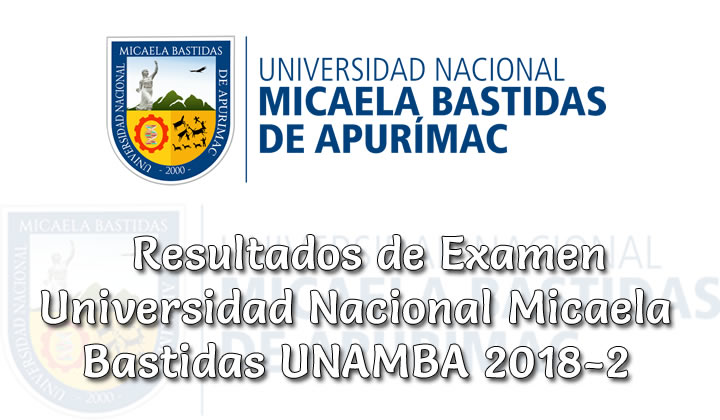 Resultados de Examen Universidad Nacional Micaela Bastidas 2018-2
