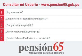 Consultar mi Usuario pensión 65
