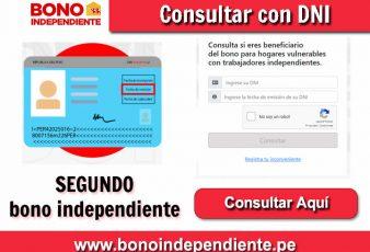 Consultar SEGUNDO bono independiente 380 Soles con DNI