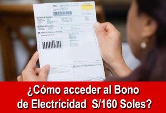 Consultar bono electricidad de 160 soles